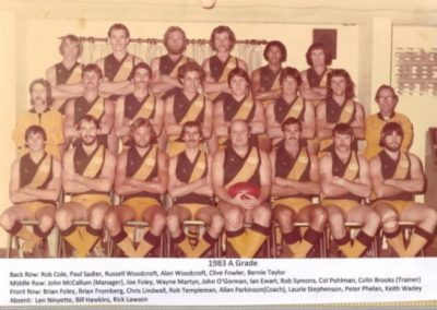 Redcliffe Tigers History 1983